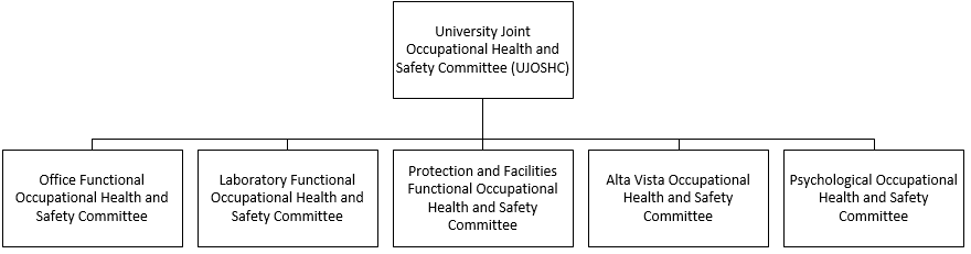 Health and safety committee structure